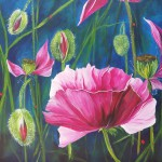 "91a. ""Pink poppies"" 50 x 50 cm. 4300,- kr."