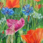 """93. """"Poppy VI"""" 30 x 40 cm Pris: 3200,- kr."""